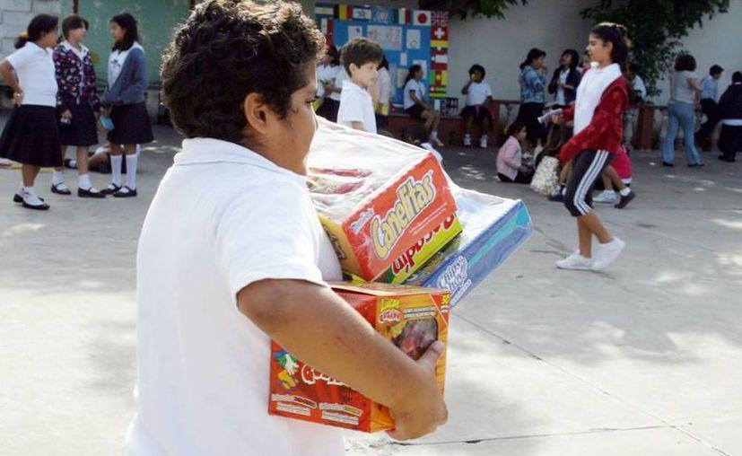 La alimentación es fundamental en el desarrollo de los niños. (Milenio Novedades)