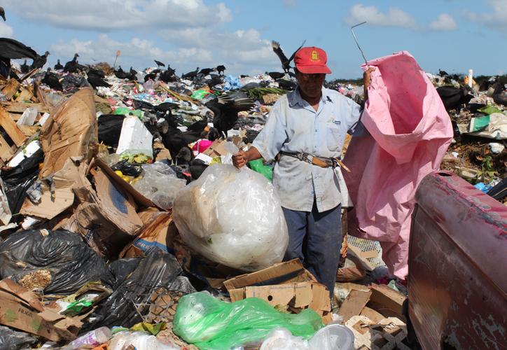 Las autoridades buscan sanear y clausurar el tiradero a cielo abierto de Chetumal, una vez que la empresa Intrasiso abandone el sitio, en aproximadamente un año. (Joel Zamora)