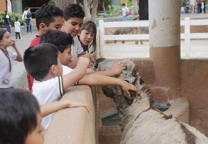 Los más pequeños suelen divertirse con animales del Rancho Veterinario. (Milenio Digital)