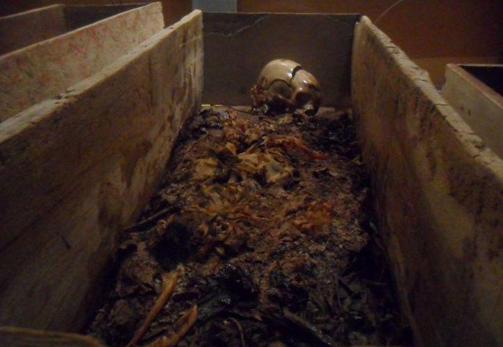 Una de las momias, empacada al alto vacío y con temperatura especial, para su conservación. (Jorge Moreno/SIPSE)