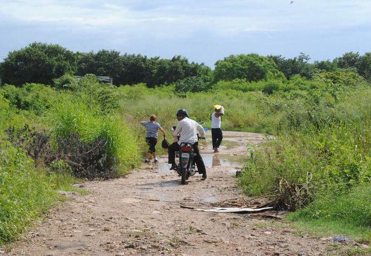 El camino sinuoso y solitario que recorría la joven estudiante.  (Eric Galindo/SIPSE)