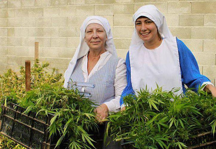 No pertenecen a una orden religiosa, siguen su código de vida espiritual y además, son veganas. (Foto: istersofcbd.com)