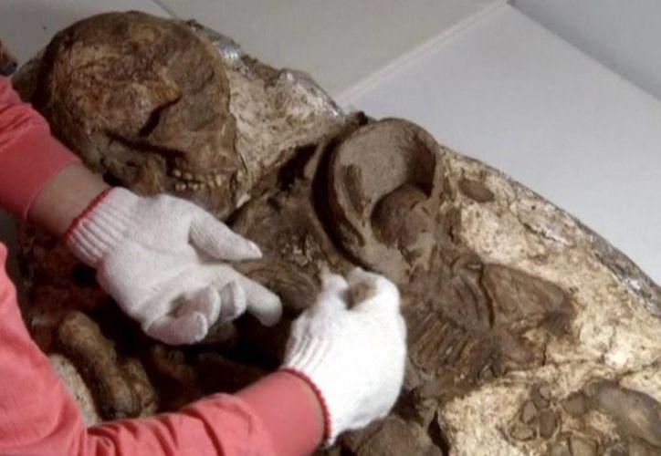 En Taiwán, arqueólogos descubrieron un fósil humano de 4 mil 800 años de antigüedad de una madre sosteniendo a un niño entre sus brazos (huffingtonpost.com)