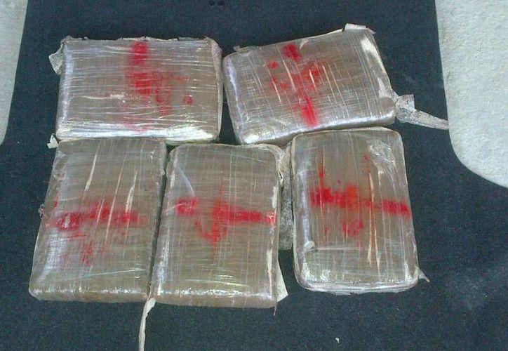 La droga se encontraba distribuida en 230 paquetes. (Imagen de referencia/Archivo/SIPSE)