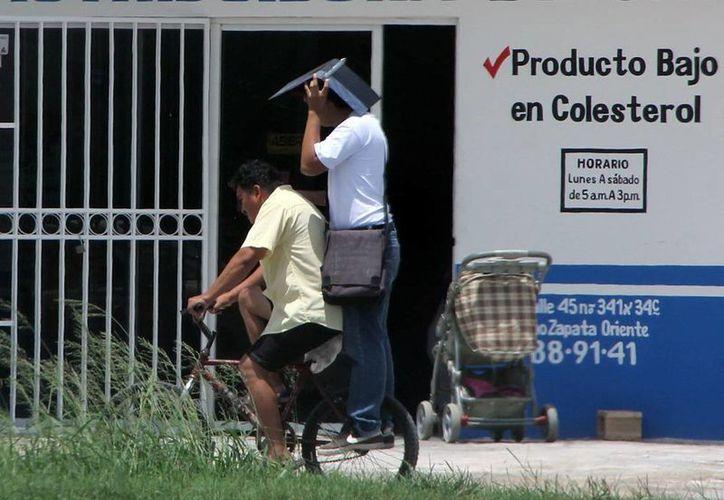 Ayer la capital yucateca registró una temperatura máxima de 34.6 grados centígrados, una mínima de 24.7, y una humedad del 99 por ciento. (José Acosta/SIPSE)