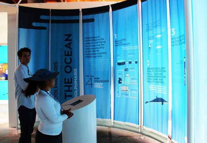 La empresa Dolphinaris lleva a cabo un programa de concientización del cuidado del ecosistema marino. (Daniel Pacheco/SIPSE)