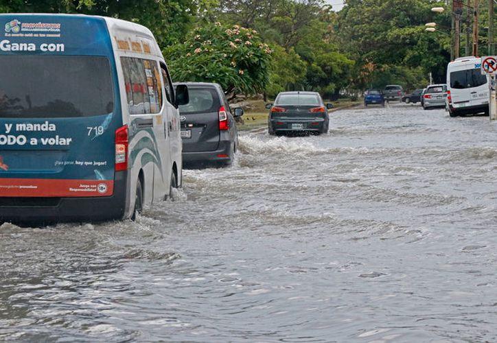 Las lluvias que sorprendieron ayer a los cancunenses, anegaron varios puntos del destino turístico. (Israel Leal/SIPSE)