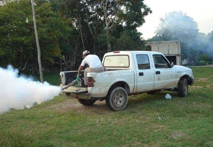 Brigadas de la Sesa buscan disipar el riesgo de enfermedades como el dengue y el paludismo. (Archivo/SIPSE)