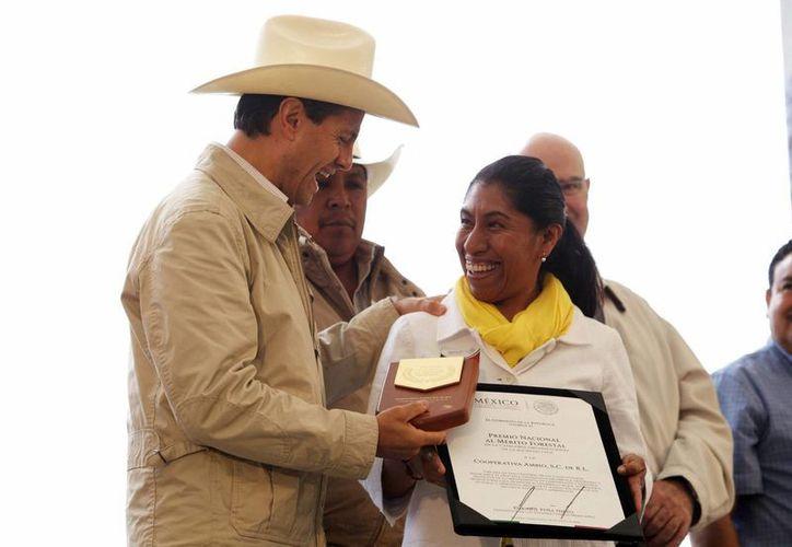 """En el marco de la conmemoración del """"Día del Árbol"""", el presidente Peña Nieto entregó reconocimientos a brigadistas de combate a incendios forestales así como los Premios Nacionales al Mérito Forestal. (Notimex)"""