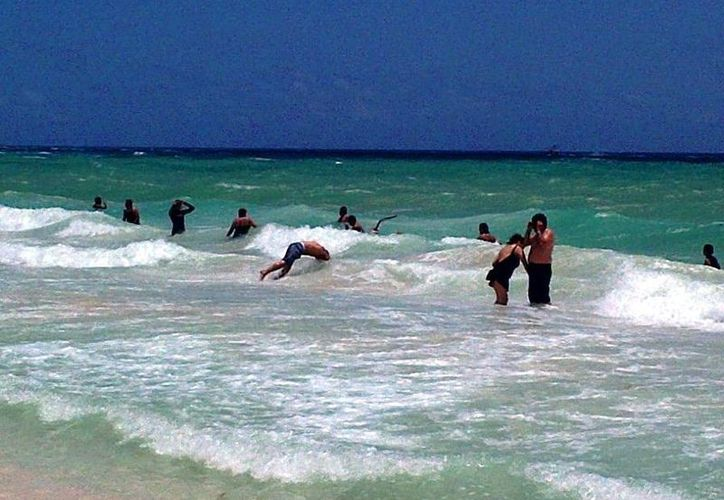 Los bañistas continúan intentando introducir perros al mar. (Daniel Pacheco/SIPSE)