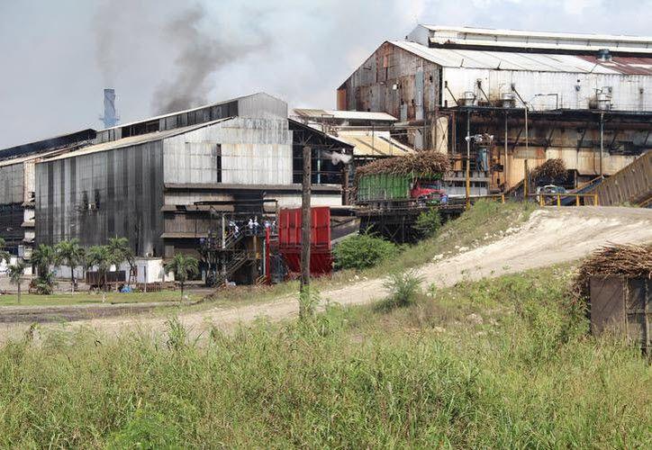 De acuerdo con el dirigente del sindicato azucarero, los trabajadores ya fueron notificados y deben cumplir, ya que firmaron contrato. (Carlos Castillo/SIPSE)