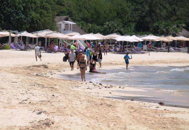 Donde se pretende instalar el proyecto existe una extensa playa. (Octavio Martínez/SIPSE)