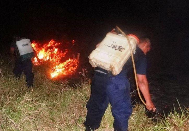 Alrededor de 20 elementos de la gendarmería municipal evitaron la propagación del fuego. (Redacción/SIPSE)