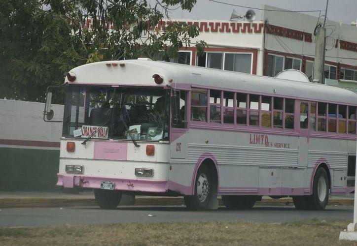 Unos 50 vehículos pesados, entre autobuses de pasajeros y de carga, además de unos 400 autos compactos y camionetas, cruzan la frontera. (Harold Alcocer/SIPSE)