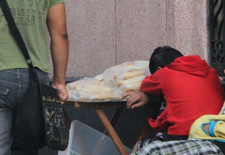 Los casos de los niños que sean detectados trabajando serán evaluados de manera individual. (José Acosta/SIPSE)
