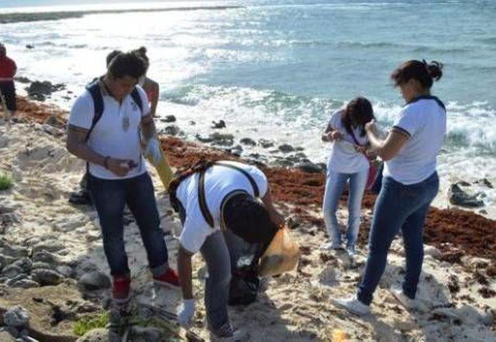 Se espera la participación de más de 600 voluntarios que estarán  divididos en seis grupos para la limpieza de la zona costera. (Contexto/Internet)