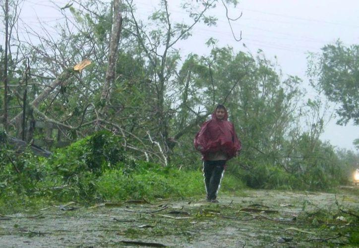 En el Océano Atlántico se esperan 7 ciclones; 4 tormentas tropicales y 3 huracanes al parecer de baja intensidad. Imagen de un hombre que camina en un poblado después del impacto de un huracán en Yucatán. (Archivo/SIPSE)