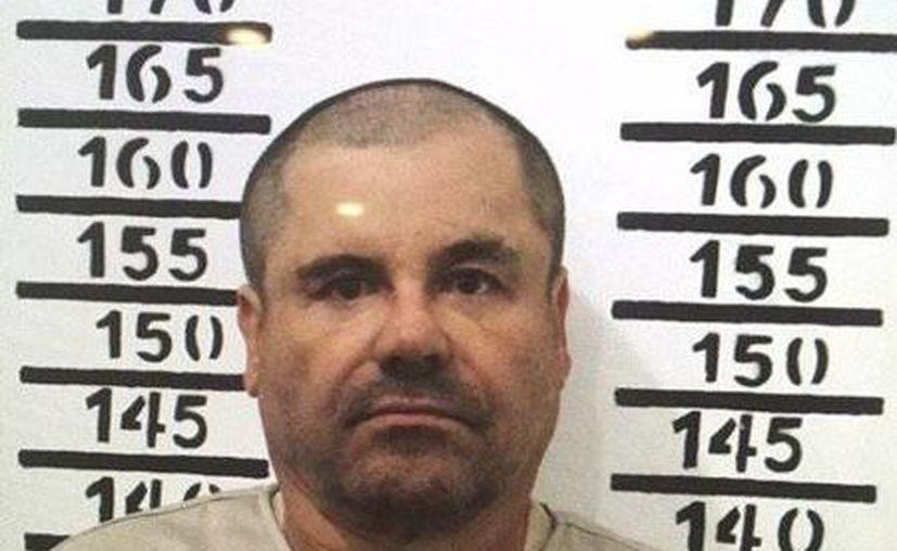 Esta es la fotografía que se tomó a El Chapo para ingresar a prisión con el número 3870 en el penal de máxima seguridad en Almoloya de Juárez, el 8 de enero de 2016. (Archivo/The Associated Press)