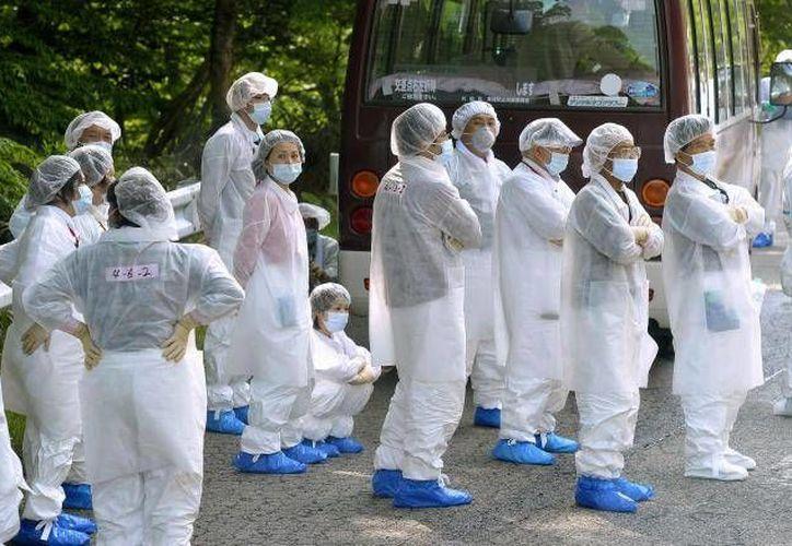 Imagen de archivo del persona de la planta nuclear de Fukushima, Japón, en la que, según una investigación periodística, se está contratando a gente sin empleo para limpiar la radiación. (SIPSE.com)