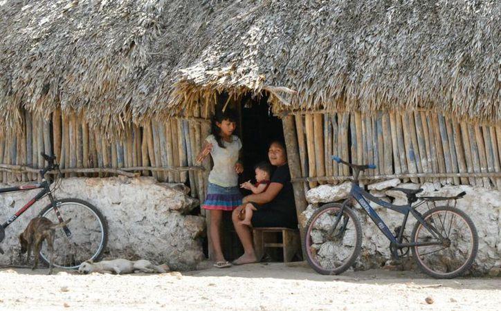 Se trata de personas que solo hablan su lengua materna en la zona maya de Quintana Roo. (Jesús Caamal/SIPSE)