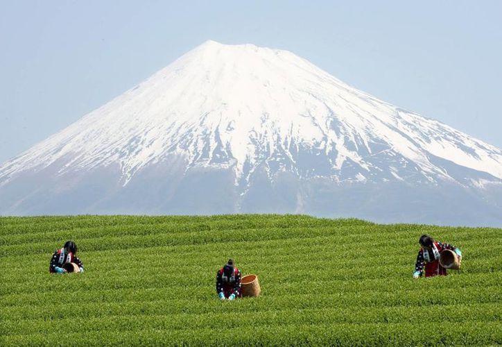 Los japoneses consideran sagrado el Fujiyama, que hoy entró a formar parte del patrimonio mundial o de la humanidad de la Unesco. (EFE)